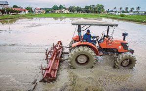 Tingkatkan hasil pertanian melalui teknologi Pertanian Tepat