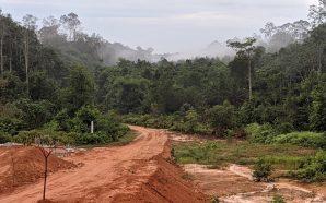 Gadai hutan punca banjir melanda?